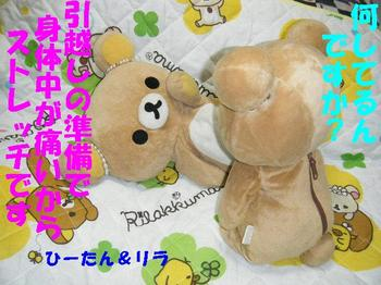 2009_0513新人ちゃん0012.JPG