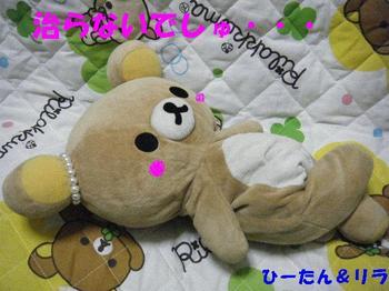 2009_0513新人ちゃん0013.JPG